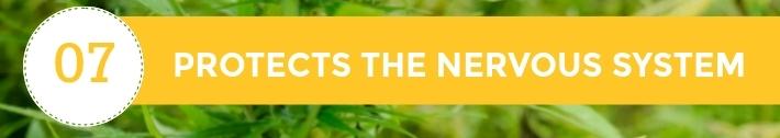 07-10-Chiens-Chanvre-CBD-Hemp-Herbals-France-Jean-Marc-Fraiche-HB-Naturals