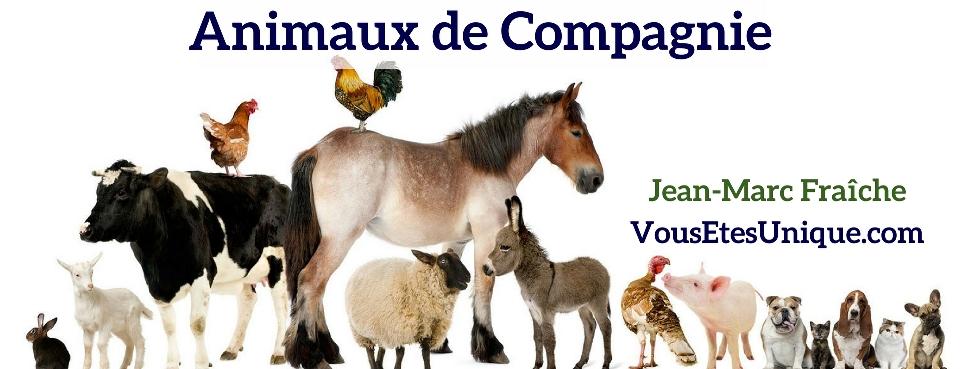 Animaux-de-Compagnie-HB-Naturals-Jean-Marc-Fraiche-VousEtesUnique