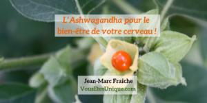 Ashwagandha-pour-le-bien-etre-de-votre-cerveau-Jean-Marc-Fraiche