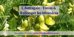 Astragale-Tonus-et-telomeres-Jean-Marc-Fraiche-VousEtesUnique.com