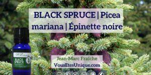 BLACK-SPRUCE-Huile-Essentielle-HB-Naturals-Jean-Marc-Fraiche-VousEtesUnique