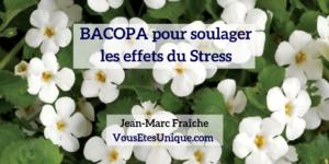 Bacopa-pour-soulager-les-effets-du-stress-Jean-Marc-Fraiche-VousEtesUnique