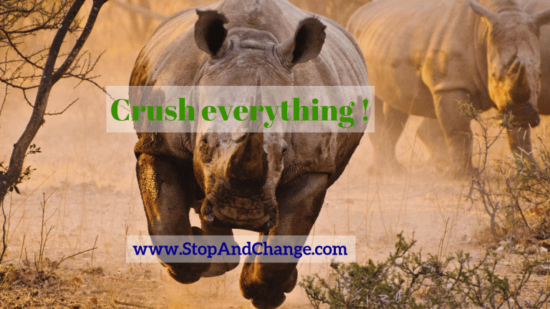 Crush_everything_V1_Karine_Lorenzi