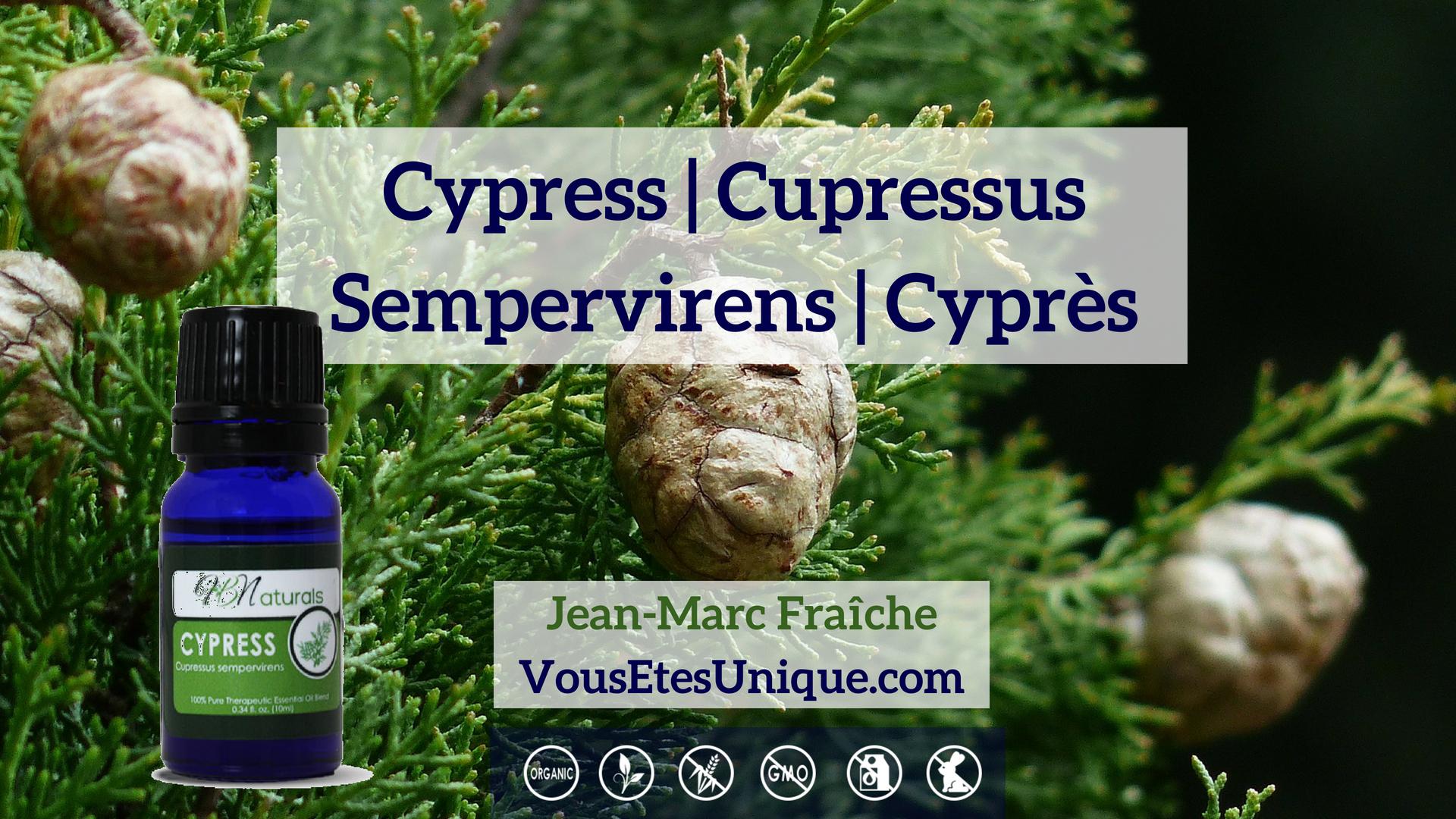 Cypres-Huile-Essentielle-HB-Naturals-Jean-Marc-Fraiche-VousEtesUnique