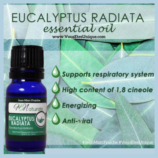 Eucalyptus-Huile-Essentielle-Jean-Marc-Fraiche-VousEtesUnique