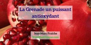 Grenade-un-puissant-antioxydant-Jean-Marc-Fraiche-Vousetesunique
