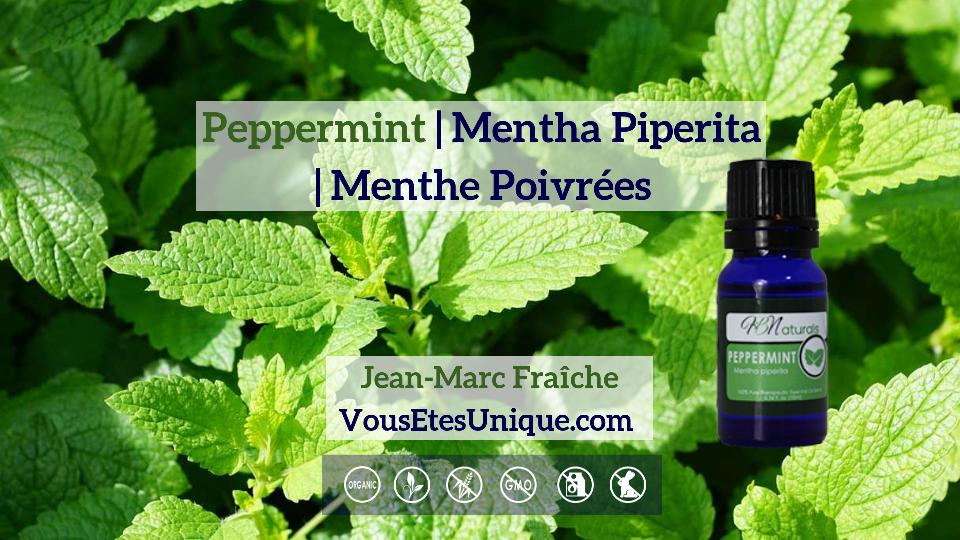 Peppermint-Mentha-Piperita-Menthe-Poivree-Huile-Essentielle-HB-Naturals-Jean-Marc-Fraiche-VousEtesUnique