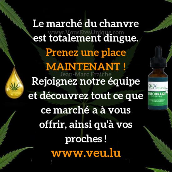 Recrutement-CBD-Jean-Marc-Fraiche-VousEtesUnique