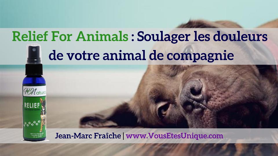 Relief-For-Pets-Jean-Marc-Fraiche-VousEtesUnique.com