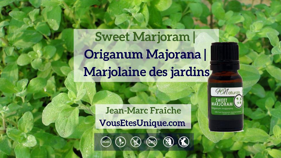 Sweet-Marjoram-Origanum-Majorana-Marjolaine-des-jardins-v2-Huile-Essentielle-HB-Naturals-Jean-Marc-Fraiche-VousEtesUnique