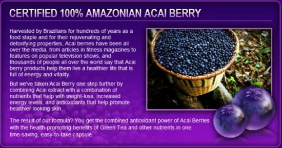 acai-berry-benefits_Jean-Marc-Fraiche-VousEtesUnique