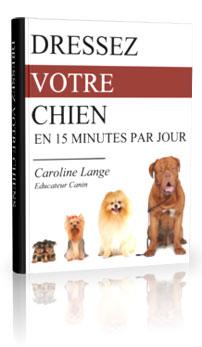 dressage-chien-Jean-Marc-Fraiche-VousEtesUnique.com