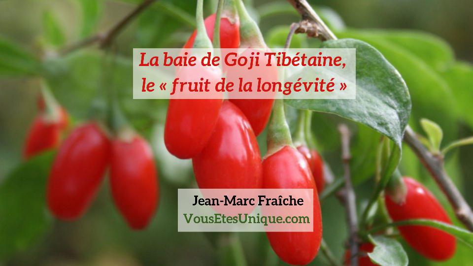 goji-baie-fruit-de-la-longevite-Jean-Marc-Fraiche