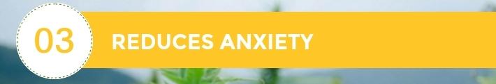 03-10-Chiens-Chanvre-CBD-Hem-Herbals-France-Jean-Marc-Fraiche-HB-Naturals