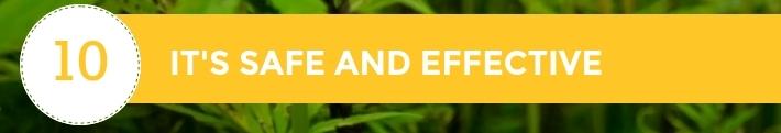 10-10-Chiens-Chanvre-CBD-Hemp-Herbals-France-Jean-Marc-Fraiche-HB-Naturals