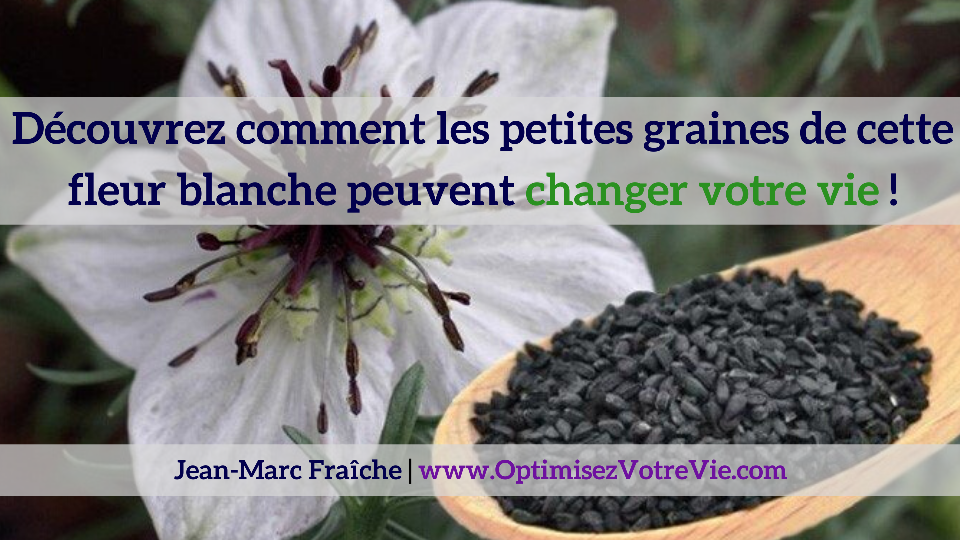 Affiliation-Black-Seed-Jean-Marc-Fraiche-VousEtesUnique
