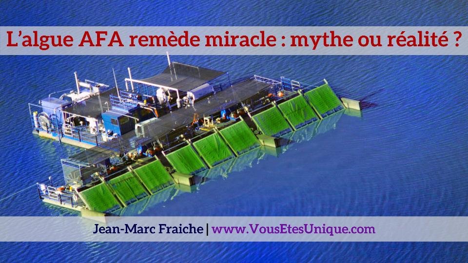 Algue-AFA-remede-miracle-mythe-ou-realite-Jean-Marc-Fraiche-VousEtesUnique.com