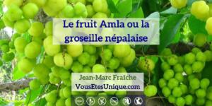 Amla-HB-Naturals-Jean-Marc-Fraiche-VousEtesUnique