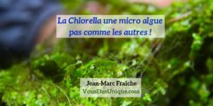 Chlorella-micro-algue-pas-comme-les-autres-Jean-Marc-Fraiche