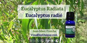 Eucalyptus-Radiata-Huile-Essentielle-HB-Naturals-Jean-Marc-Fraiche-VousEtesUnique