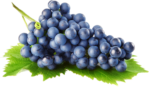 ExGrape-antioxydant-Jean-Marc-Fraiche-VousEtesUnique.com