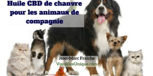 Huile-CBD-Chien-Chat-Animaux-de-compagnie-Jean-Marc-Fraiche-HB-Naturals-Hemp-Herbals