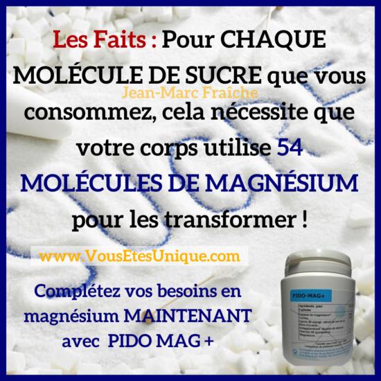MAGNESIUM-des-faits-Jean-Marc-Fraiche-VousEtesUnique.com