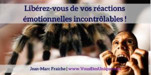 NERTI-liberez-vous-de-vos-phobies-Jean-Marc-Fraiche-VousEtesUnique.com