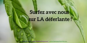 Surfez-sur-la-deferlante-Jean-Marc-Fraiche-VousEtesUnique.com
