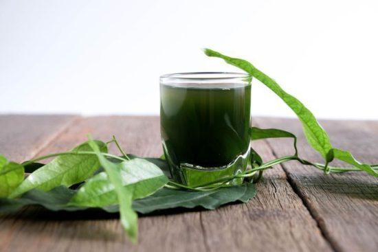 bienfaits-chlorophylle-sante-Jean-Marc-Fraiche-VousEtesUnique.com