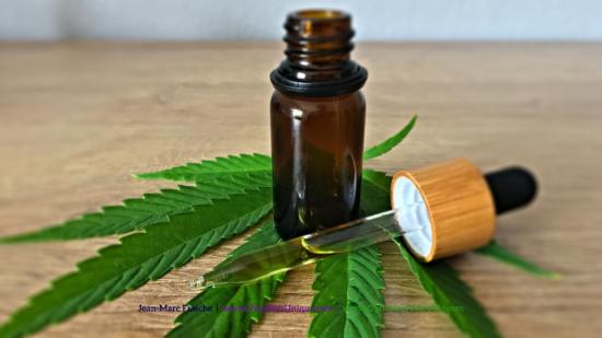 cbd-oil-cannabis-feuille-Jean-Marc-Fraiche-VousEtesUnique.com