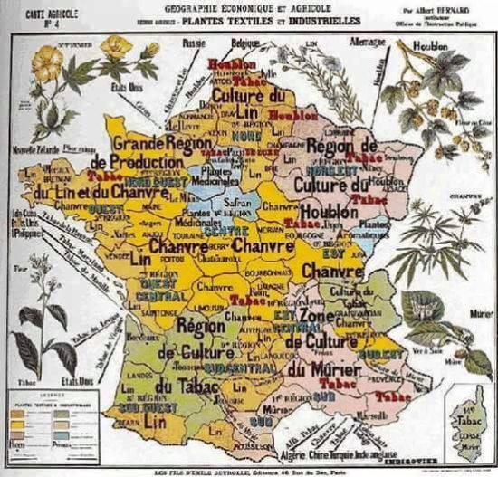 chanvre-Histoire-Jean-Marc-Fraiche-VousEtesUnique