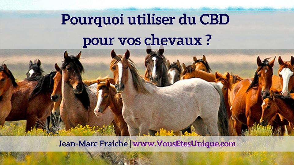 chevaux-cbd-huile-Jean-Marc-Fraiche-VousEtesUnique.com