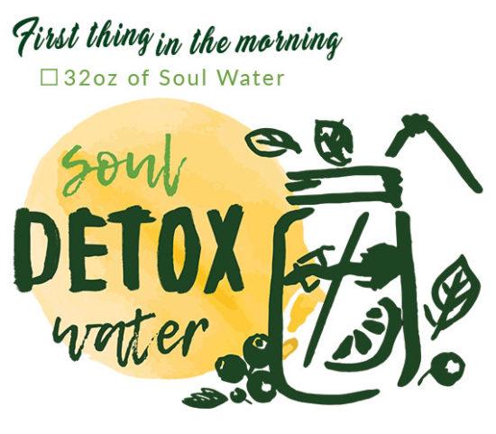 love-your-liver-box-Soul-HB-Naturals-Jean-Marc-Fraiche-VousEtesUnique.com
