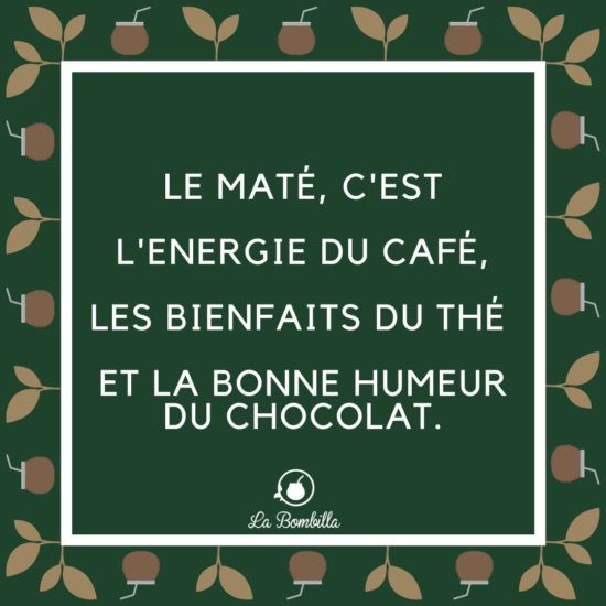mate-la-bombilla-Les-bienfaits-Jean-Marc-Fraiche-VousEtesUnique.com