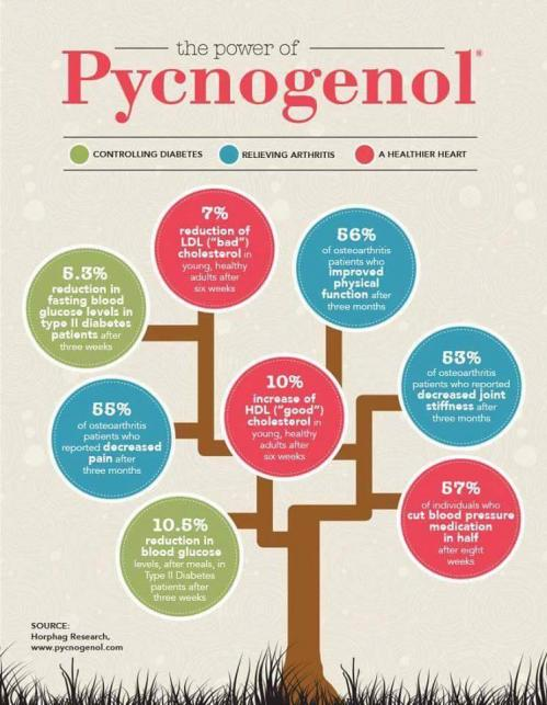 pycnogenol-effets-Pycnogenol-StemLife-Jean-Marc-Fraiche-VousEtesUnique-Phyto-Market.com