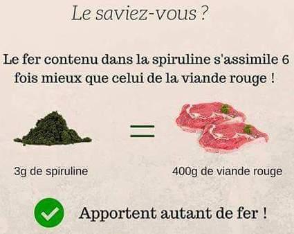 spiruline-fer-Phyto-Market.com_