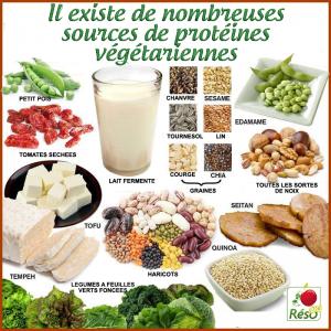 vegetarien-Phyto-Market.com